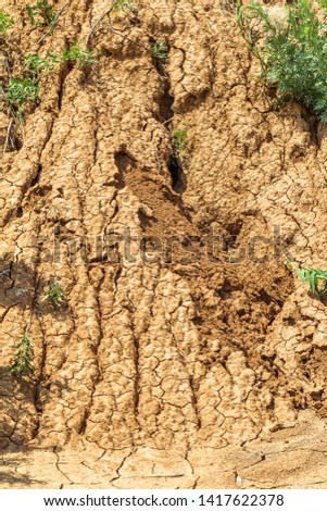 Landslide zone on Black Sea coast. Rock of sea rock shell. Zone of natural disasters during rainy season. Large masses of earth slip along slope of hill, destroy houses. Landslide - threat to life #1417622378