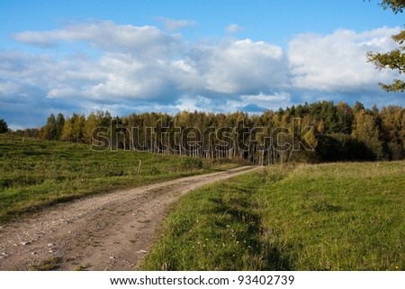 Lane in meadow and deep blue
