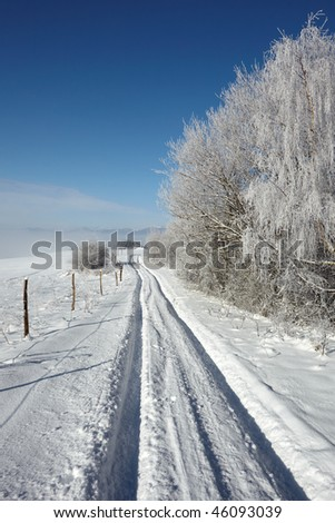 lane in winter landscape