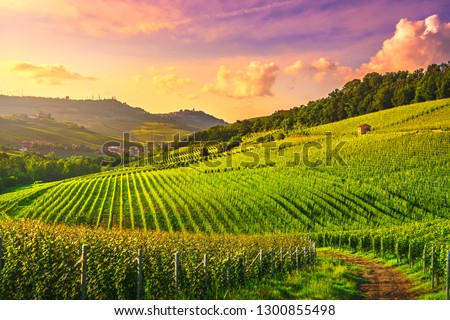 Langhe vineyards sunset panorama, Barolo and La Morra, Unesco Site, Piedmont, Northern Italy Europe.