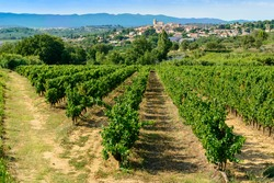 Languedoc vineyards around Beziers with view on Corneilhan and Herault mountains languedoc-roussillon france