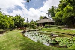 lankester botanical garden costa rica