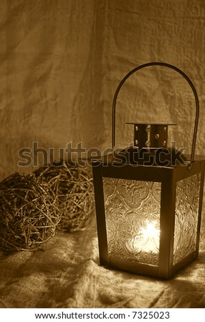 lantern illuminating two shrubs balls with faint light