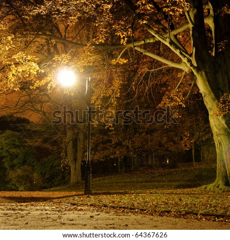 Lantern in the park during the autumn season at night