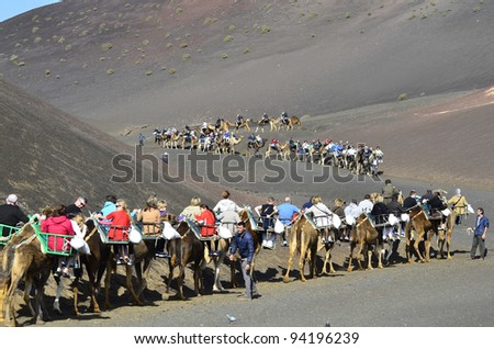LANZAROTE, SPAIN - JANUARY 18: camel riding for tourists to volcanic cones is a tourist attraction in the Timanfaya Nationalpark on the Canary Island- on January 18, 2012 in Lanzarote, Spain
