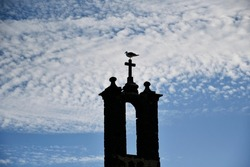 Lanzarote, Spain - 22. November 2020: A seagull perched on a church steeple