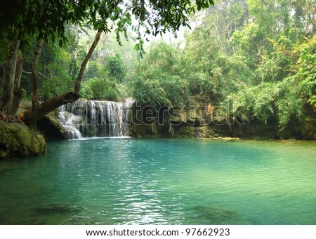 Lao Forest - Luang Prapang Region - Lao