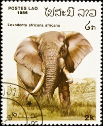 LAOS - circa 1986:stamp features an African elephant (loxodonta africana), circa 1986 in the Lao People's Democratic Republic.
