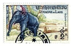 Laos Postage Stamp Man riding Elephant isolated on white
