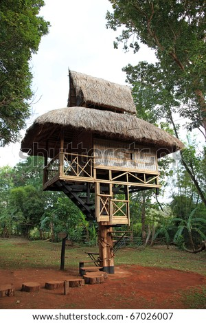 Bamboo Style House