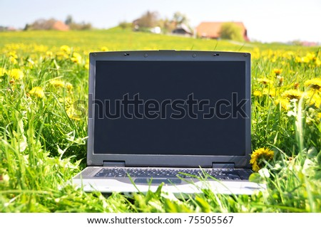 Laptop on the spring meadow