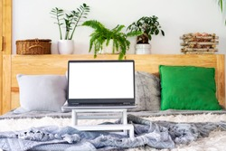 Laptop with blank screen on bed in stylish bedroom. Business and work from home on computer during coronavirus. Technology and home office workplace. Plants in pots.