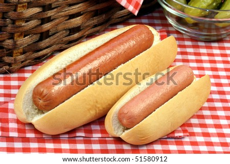 large and small hot dog on  picnic set  perfect for a family trip or an outdoors day