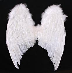 Large Angel Wings Digital Prop