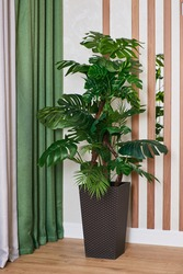 Large beautiful artificial monstera flower with green leaves in brown pot in modern interior.