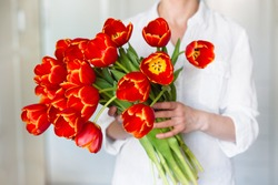 Large beautiful bouquet of red tulips in the hands of a girl in a white shirt