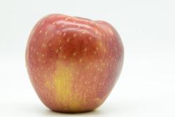 Large Beautiful Cosmic Crisp Apple  Against Bright White Background