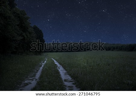 Large beautiful spring the field with a distant kind on a forest and night sky