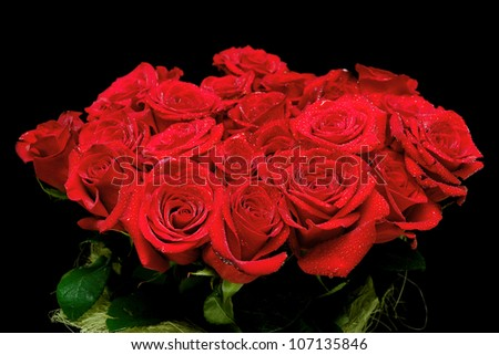 large bouquet of beautiful red roses in drops on a black background