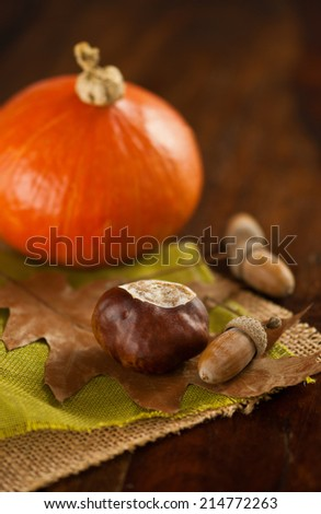large chestnut, oak nuts and oak leaf on green and beige jutes with hokkaido pumpkin in background