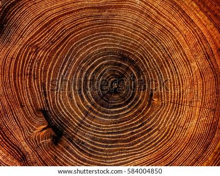 large circular piece of wood...