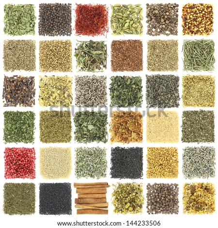 Large collection of herbs and spices isolated on white