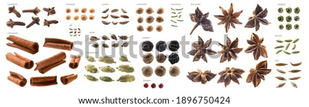Large collection of seasonings and spices on a white background Stock photo ©