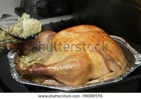 large cooked Thanksgiving or Christmas turkey browned with stuffing
