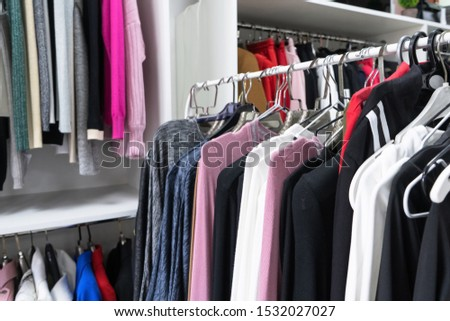 Large dressing room. Bags, shoes, things are neatly folded in the cabinets. The order in the wardrobe. Magical cleaning. Every thing in its place. #1532027027