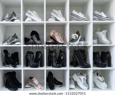 Large dressing room. Bags, shoes, things are neatly folded in the cabinets. The order in the wardrobe. Magical cleaning. Every thing in its place. #1532027051