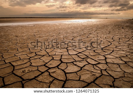 Large dry field of land after a long period of drought.