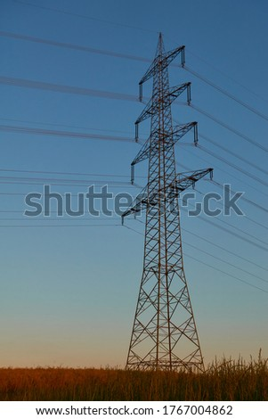 Large Electricity pylon also overhead line pylon stands in the wheat field, dark blue evening sky. Germany. ストックフォト ©