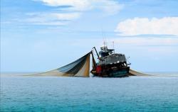 Large fishing trawlers are fishing in the sea.