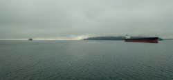 Large freighter ships sit calmly in the Puget Sound under a layer of fog