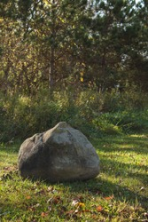 Large Grey Boulder on Sunlit Green Lawn With Tall Grass and Yellow Autumn Trees