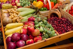 large group of fall harvest vegetables including corn and apples