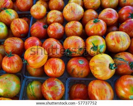 Large group of multicolored, organic heirloom tomatoes at farm market