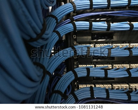 Large group of UTP cables, Ethernet cables in rack cabinet, UTP cables from a patch panel in the server rack in the data center room.