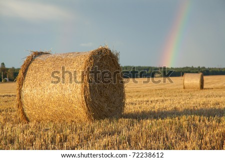 Large hay roll on the field