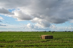 Large hay square bail in a green field