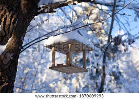 Large horizontal photo. Winter time. Winter landscape. Russia. Bird feeder in the winter snowy forest. Photo from bottom to top. Feeder on the background of white trees and blue sky. ストックフォト ©