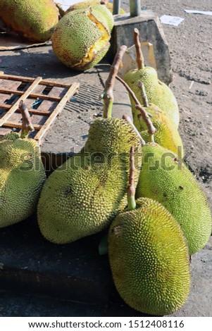 Large jackfruit with large size