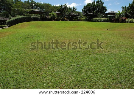 Large Lawn - stock photo