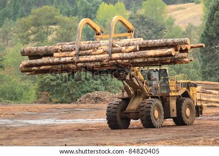 Large log loader and operations in the log yard at a conifer log mill near Roseburg Oregon