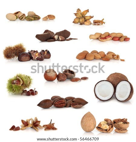 Large mixed nut food collection, isolated over white background.