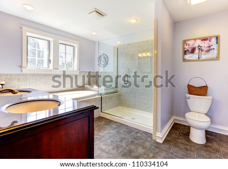 Large nice lavender bathroom with nice shower, tub and sink.