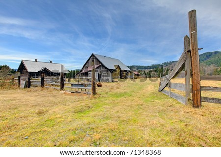 Large old rustic grey barn in the field with mountain . Build in 1907 old barn and shed in Ashford, near Mt.Rainier, Washington State