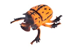 Large orange beetle, toy beetle on a white background, isolated