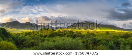 Large panorama with green forest and mountain range illuminated by golden sunlight at sunrise. Moody and dramatic sky at MacGillycuddys Reeks mountains, Ring of Kerry, Ireland Stok fotoğraf ©