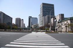 Large pedestrian crossing in Osaka (Japan)